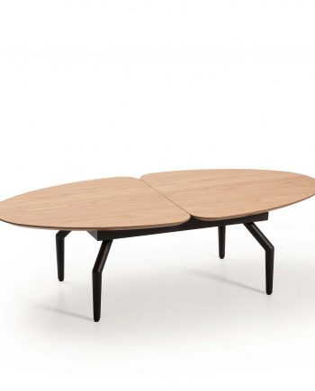 table basse Casandra Hamilton 13925 IZ